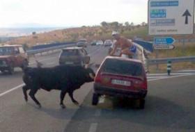 bika, országút, spanyolország, videó
