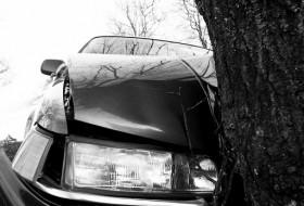 autóbaleset, balesetveszély, vadbaleset