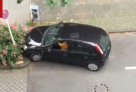 jogosítvány, parkolás
