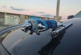 a nap képe, jaguar, téli autózás