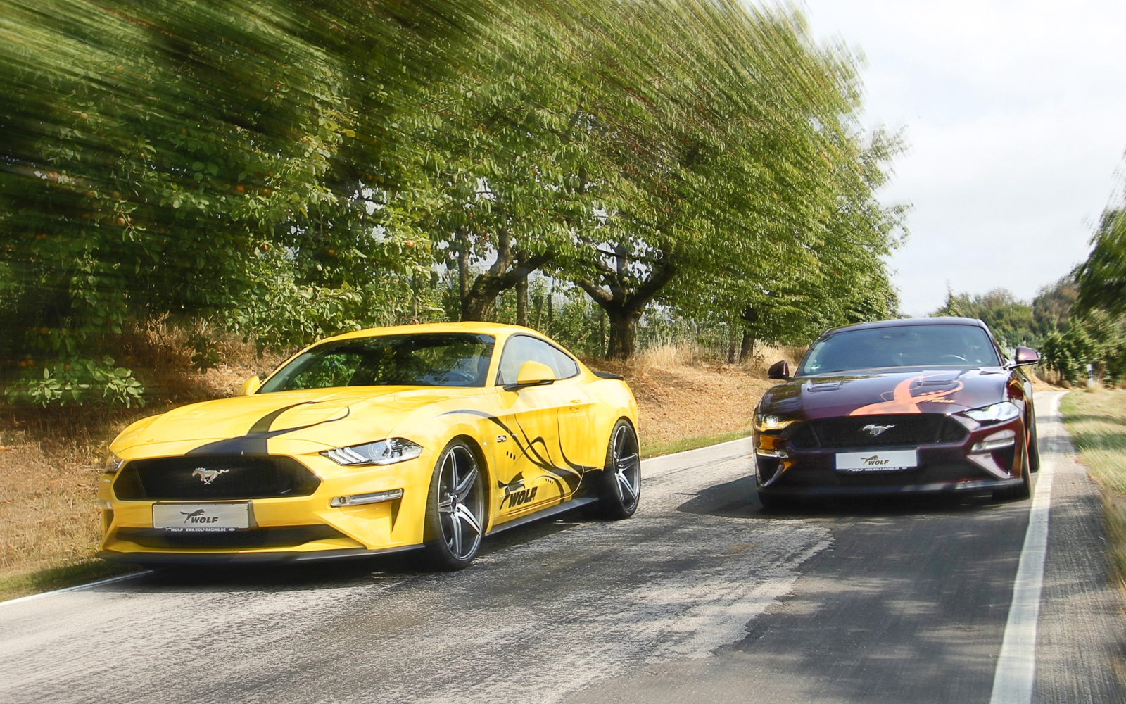 Wolf_Racing_Mustang_Facelift_Drive