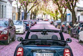 japán, japáncseresznye, mini, mini cabrio, tavasz