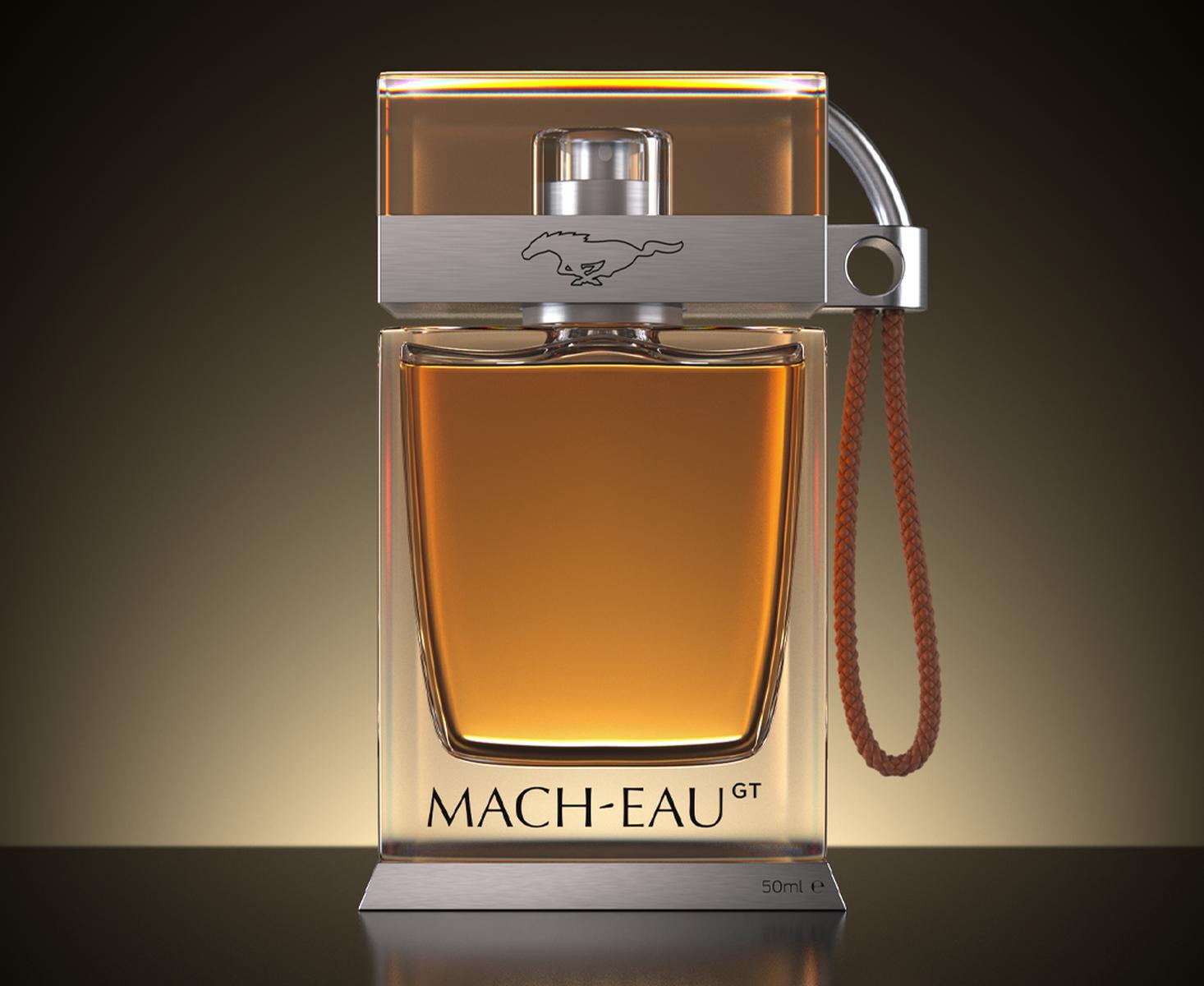 Ford_Mach-Eau_3